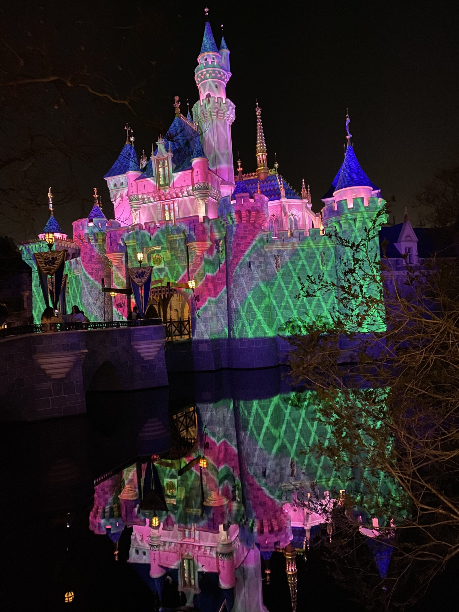 Disneyland After Dark Sweethearts Nite Castle Projections 1